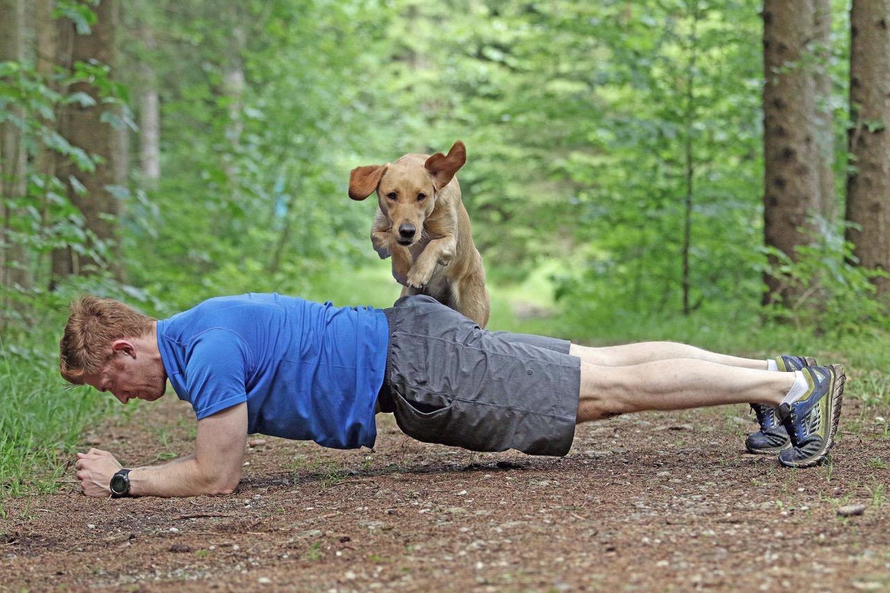 Sportfreund Hund