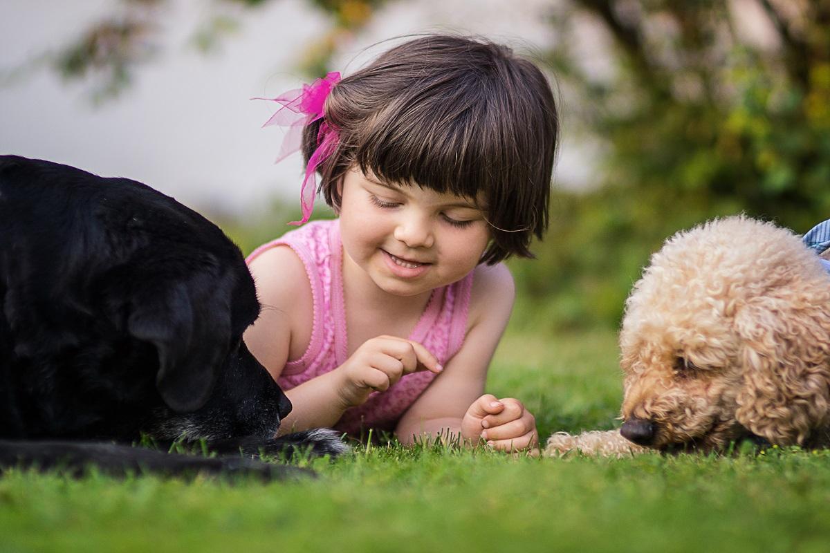 BHV-Frühjahrsweiterbildung 2021 - Kind & Hund